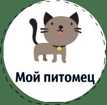 сочинения_мой_питомец