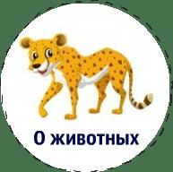 сочинения_о_животных